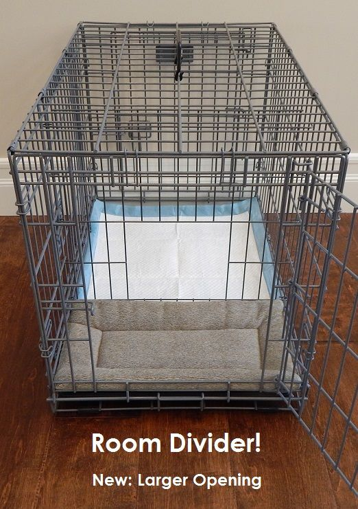 potty training with a twist careers with animals With 2 room dog crate